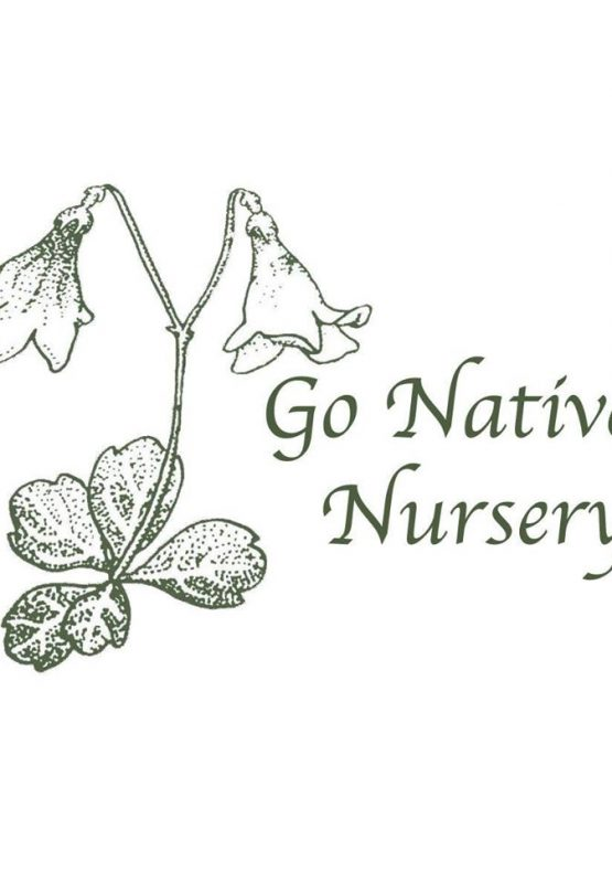 Go Natives! Nursery