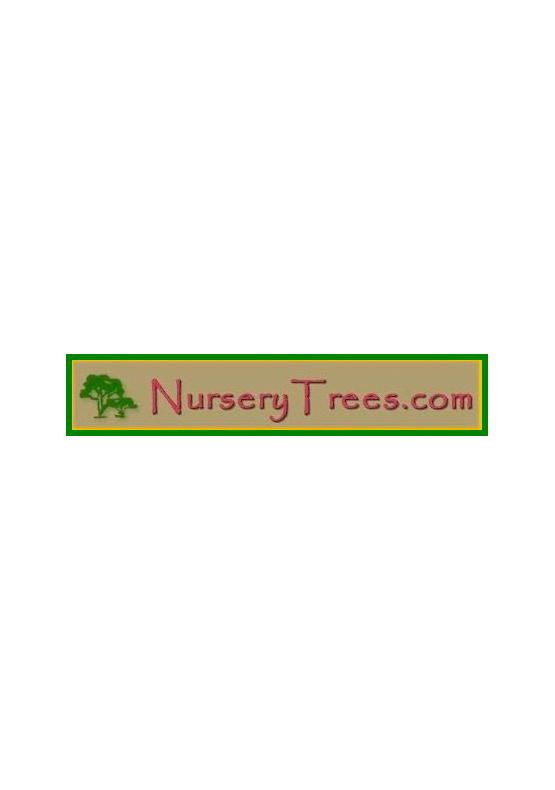 Nurserytrees.com, LLC
