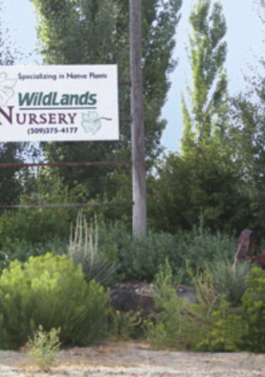 Wildlands Nursery